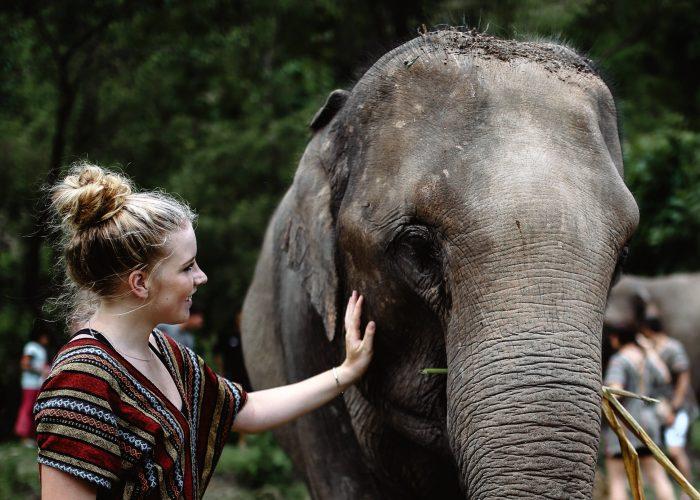 Sloane Gordon And Elephant
